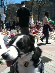Boston Marathon shrine, Copley Square.